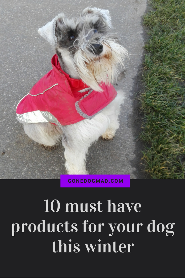 Essential products to keep your pooch warm, happy and safe this winter. #dogcaretips #dogproducts #winter #winterpetcare via @gonedogmad1