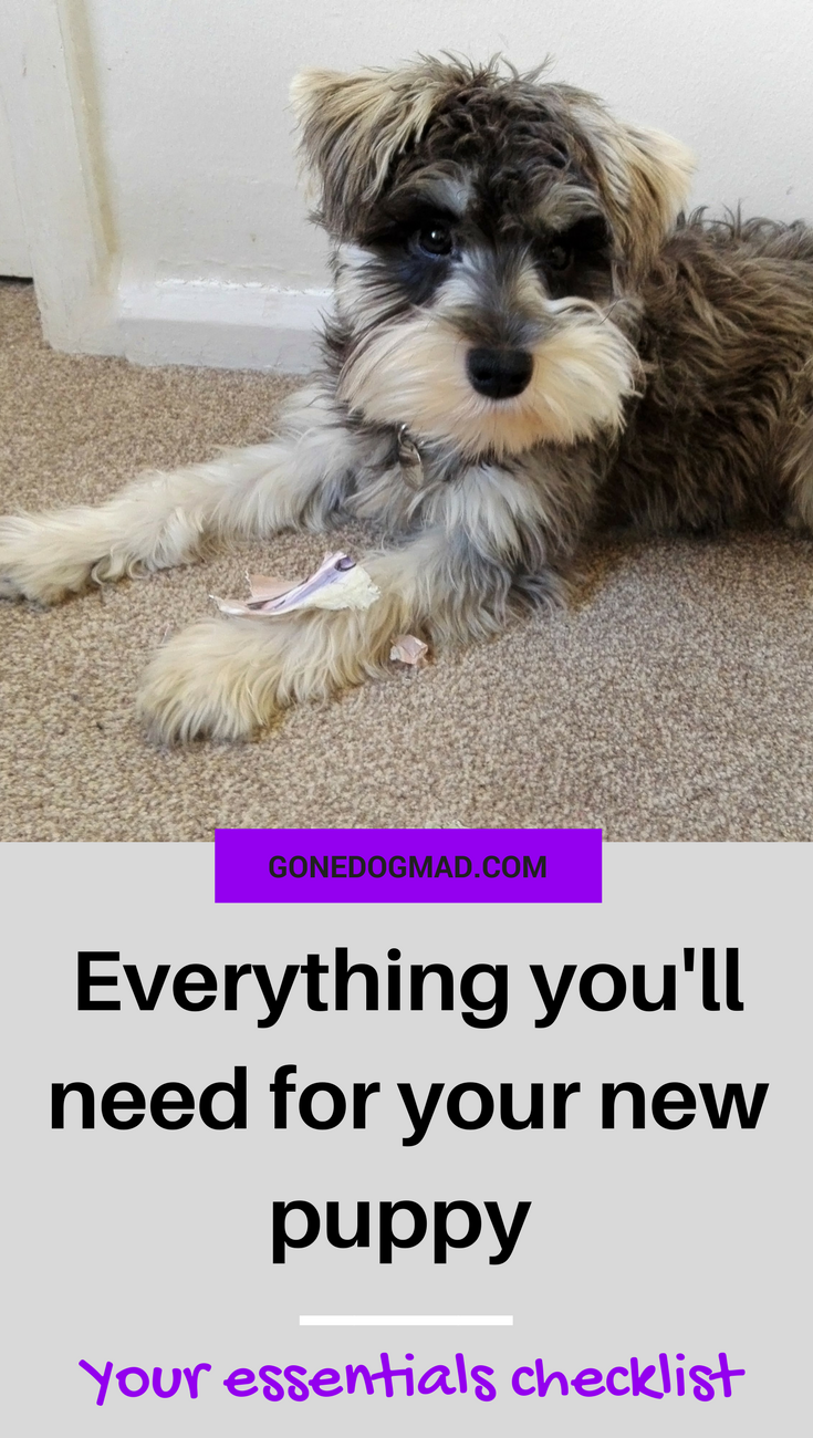 Before you bring your new puppy home, there are many things to consider. Your new pup will need a few essentials to help them feel comfortable and ensure you're prepared for every eventuality. Preparation is key to help pup settle in. Here is the complete checklist of everything you'll need before the big day. #dogownertips #dogmom #doglovers #dogtips #dogcare #puppytips #dogs #puppies #dogadvice #puppylove via @gonedogmad1