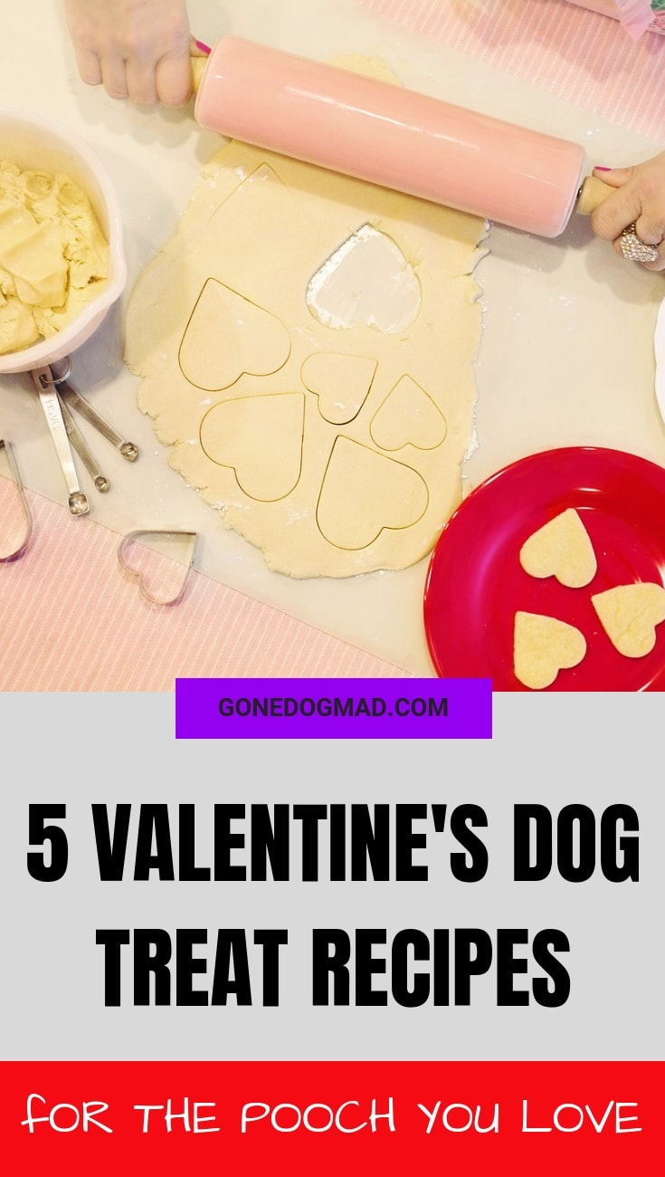 VALENTINES DAY DOG TREAT RECIPES